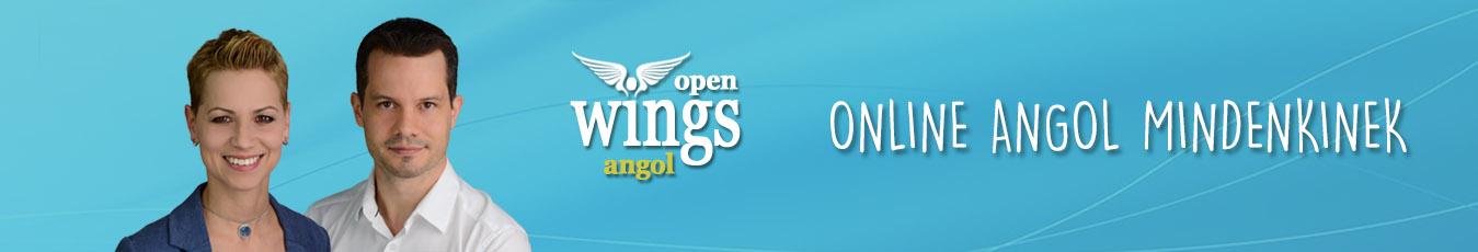 OpenWingsAngol