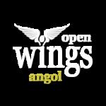 openwings angol nyelvtanfolyam promo logo